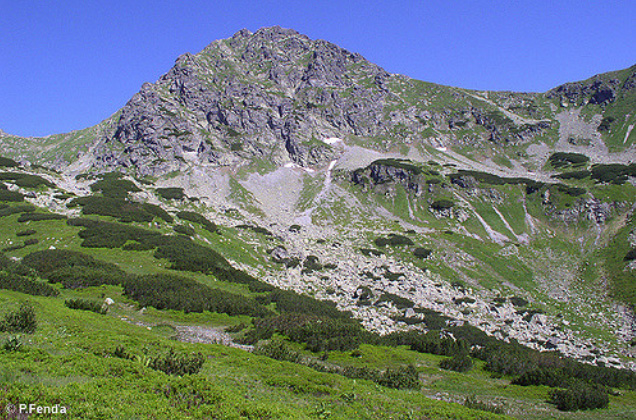 Ostrý Roháč mountain, view from Ždiarske saddle, West Tatras (photo by Peter Fenďa)