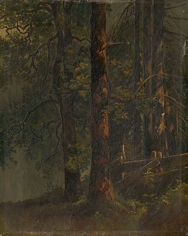 Karol Ľudovít Libay: Interior of Forest, presumably 1860 (source by Slovak National Gallery, http://www.webumenia.sk/dielo/SVK:SNG.O_5792)