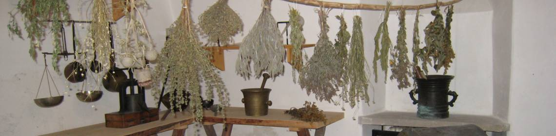 Dried medicinal herbs as in the days of Frater Cyprian, Museum of Červený Kláštor (photo by Mária Laurincová)