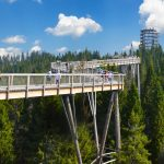 Bachledka treetop walk, Bachledova Valley, High Tatras (photo by Jano Štovka, MQEP)